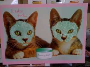 Cats having a facial